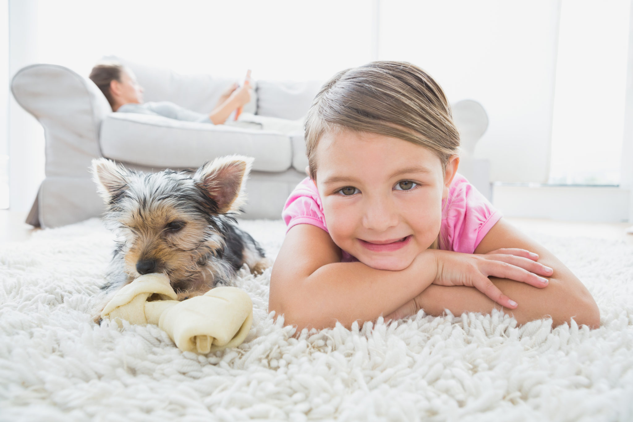 Carpet Cleaning in Colorado Springs for better health